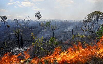 Nota da Uneafro Brasil: A política anti meio ambiente brasileira reforça o racismo ambiental